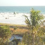 View of Siesta Beach from