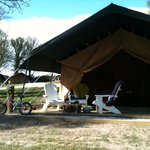  Our tent with bikes