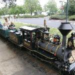 Ride the steam train at the Folsom Zoo.