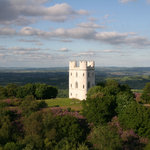 The beautiful Haldon Belvedere (Lawrence Castle)