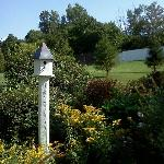  Birdhouse and some of the grounds