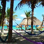as you walk to the beach from the bungalows - hammocks