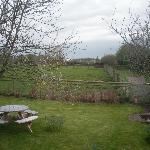 View overlooking the Garden at Floras Barn from the main room