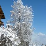  Schnee in Hotel Alpen