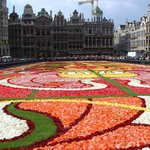 Le Tapis de Fleurs - Flower Carpet