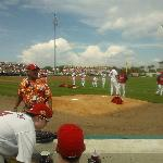 Our view from our seats at Roger Dean