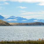 Lake Tekapo Budget Accommodation resmi