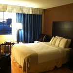 The Holiday Inn Niagara Falls resmi