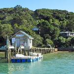 Kawau Experience wharf, lodge on right