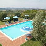 A pool on a hilltop in Tuscan wine country. Can I go back now please?!