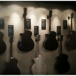 A selection of Taylor Guitars displaying the wood used in their manufacture.