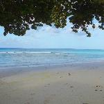  Dover Beach at the front of Apartment G