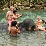 Ban Chang Thai - Elephant Camp Foto