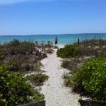 Zdjęcie The Beach on Longboat Key