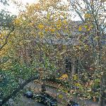 Leafy trees obscure the Garrison Church