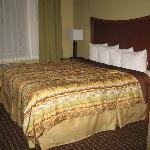 Bilde fra BEST WESTERN PLUS Grand Island Inn & Suites