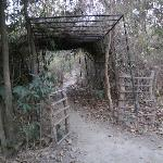 The entrance to Camp Forktail Creek