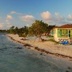Photo de Blackbird Caye Resort