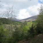  Ballyhoura Scenery