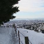 Looking across Bowenvale valley from Latters Spur track in winter
