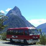 Milford Sound BBQ Bus- Day Tour