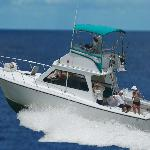 Carole Ann II Private Fishing Charters