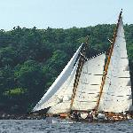 Schooner Yacht Heron