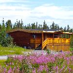 Arctic Chalet B&B