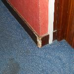 carpet stains and molding disrepair