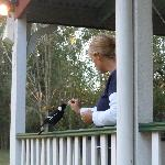  feeding Ms Magpie