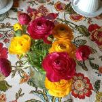bright and cheery breakfast table