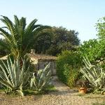 Photo of Finca El Encinar
