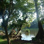 Foto di Samoa Lodge & Resort Tortuguero