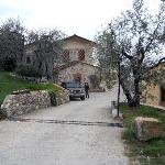 Between olives trees the Agriturismo
