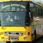 Magical Mystery Tour Newquay