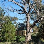 Bunkhouse in the bush