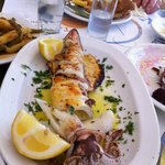  DELICIOUS GRILLED CALAMARI