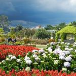 Dalat Flower Park