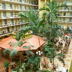 صورة فوتوغرافية لـ ‪Embassy Suites Orlando/Lake Buena Vista Resort‬