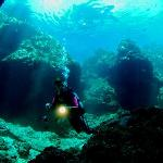 Life Time Diving Service