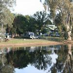 Rutherglen Caravan and Tourist Park