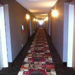 Hallway to rooms