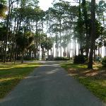 Фотография Hunting Island State Park Campground