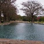 San Pedro Springs Park