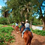 Photo of Turtle Bay Resort Horse Riding
