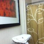 Bilde fra Fairfield Inn & Suites Tucson North/Oro Valley
