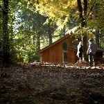 Forest Holidays Forest of Dean Cabins