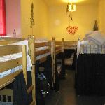 BUNK BEDS ON HOSTEL BEDROOM