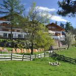 Photo de Waldhotel Tann - Hotel del bosco Tann