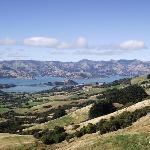 Looking over to Banks Peninsula and Akaroa